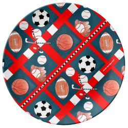 5 sports porcelain plate